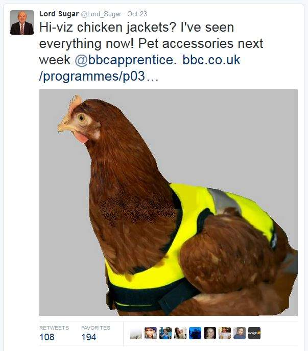 High-Vis Chicken Jackets as seen on The Apprentice